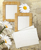 Grunge frame with daisy and paper — Stock Photo