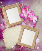 Grunge frame with gladiolus and paper — Stockfoto