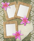 Grunge frame with lily and paper — Stock Photo