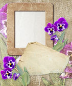 Grunge frame with pansy and paper — Stock Photo