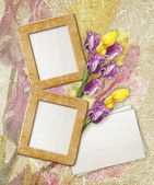 Grunge frame with tulips and paper — Stock Photo