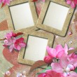 Grunge frame with cherry and paper - Stockfoto