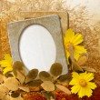 Grunge frame with daisy against park — Stock Photo