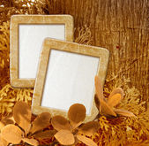 Photo frame against wood — Stok fotoğraf