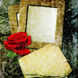 Grunge frame with rose and paper — Stock Photo #9369931