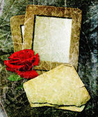 Grunge frame with rose and paper — Stock Photo