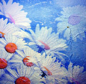 Old background with daisies — Stock Photo