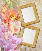Grunge frame with gladiolus — Stock Photo