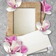 Grunge frame with roses and paper — Stock Photo #9972383