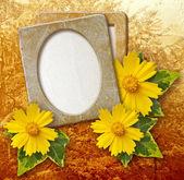 Grunge frame with daisy against park — Stock Photo
