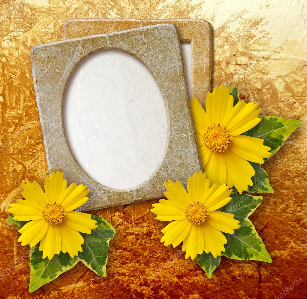 Old grunge photo frame with daisy against park — Stock Photo #9972433