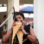 South American Street Musician — Stock Photo