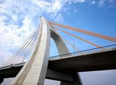 Recently Completed Cable-Stayed Bridge — Stock Photo