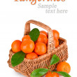 Ripe tangerines with leaves in basket with sample text — Photo