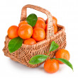 Ripe tangerines with leaves in basket — Stock Photo