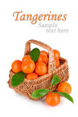 Ripe tangerines with leaves in basket with sample text — Stock Photo