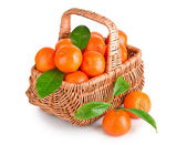 Ripe tangerines with leaves in basket — Foto Stock