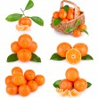 Royalty-Free Stock Photo: Set of fresh mandarin fruits with leaves