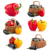Set of vegetable — Stock Photo