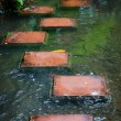Stepping stones across stream — Stock Photo