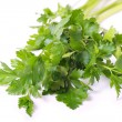 Parsley. — Foto de Stock