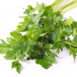 Parsley. — Stock Photo #8816679