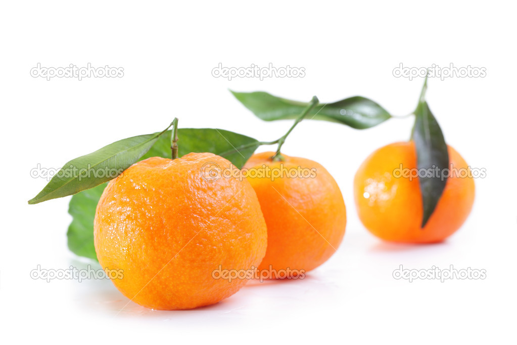 Mandarins.  Stock Photo #8816668