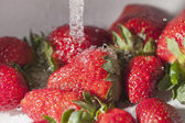Strawberries and water. — Stock fotografie
