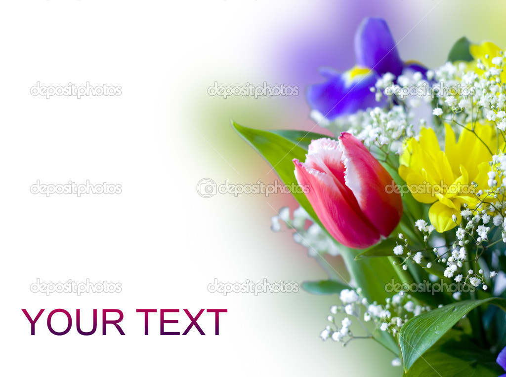 Beautiful bouquet of spring flowers on white background  Stock Photo #8770167