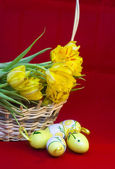 Páscoa ainda vida de ovos e tulipas — Foto Stock
