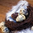 Easter feather eggs — Lizenzfreies Foto