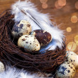Easter feather eggs — 图库照片
