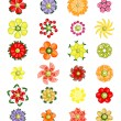 Flower design set made from fruits — Stock Vector