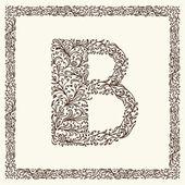 Ornamental letter for your design — Stock Vector