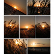 Sunset collection for your design — Stock Photo