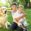 Two brothers in the park with a dog - Stock Photo