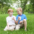 Royalty-Free Stock Photo: Portrait of two boys in the summer outdoors