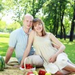 Young couple on picnic in the park — Stockfoto