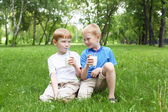 Portrét dvou chlapců, v létě venku — Stock fotografie