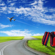 Red suitcase and plane — Stock fotografie