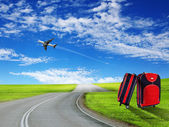 Red suitcase and plane — Stock Photo