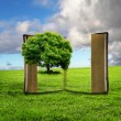 Book with green landscape inside - Foto Stock