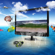 Large flat screen with nature images — Stock Photo #8242270