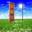 Stock Photo: Open door leading to summer