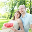 Young couple on picnic in the park — Stock Photo #8348921