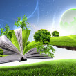 Open book with green nature world — Stock Photo