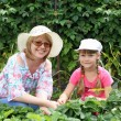 Mother and daughter gardening together — Stock Photo #8520675