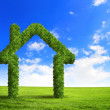 Green grass  house symbol - Stock Photo