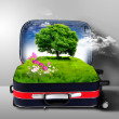 Royalty-Free Stock Photo: Red suitcase with green nature inside
