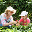 Mother and daughter gardening together — Stock Photo #9918673